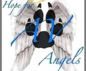 Hope for the Antelope Valley Angels